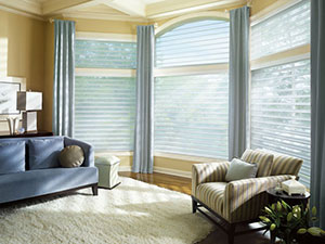 Blinds Repair Services for Home Living Rooms Near Westlake Village, Thousand Oaks & Camarillo, California (CA)