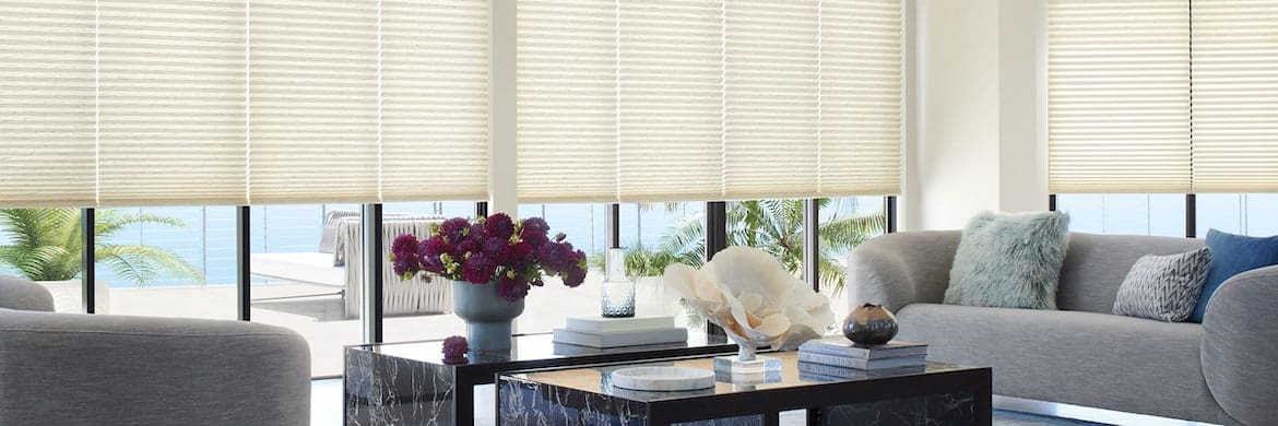 Duette® Cellular Honeycomb Shades for Living Room Windows in Homes Near Westlake Village, California (CA)